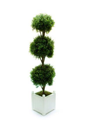 Topiary - Triple Ball