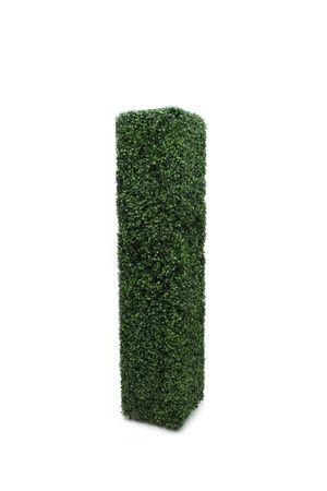 Topiary - Rectangle